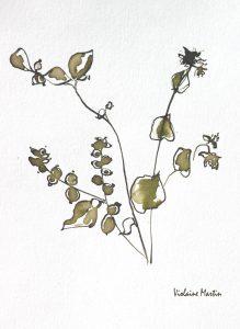 Fleurs des champs - Lavis - Chelsea 2000 - Violaine Martin Créations - Design textile - tissage jacquards, unis et velours - aquarelles botaniques - Hauts-de-France