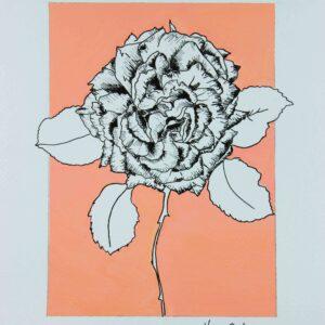 Illustration botanique - rose sur fond pêche - Violaine Martin Créations - Création textile - tissage jacquards, unis et velours - Hauts-de-France
