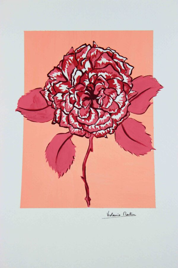Gouaché botanique - rose sur fond pêche - Violaine Martin Créations - Création textile - tissage jacquards, unis et velours - Hauts-de-France