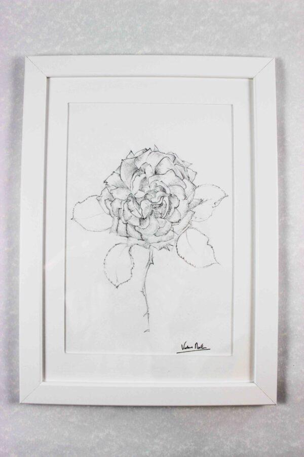 Dessin au trait - rose encadrée- Violaine Martin Créations - Création textile - tissage jacquards, unis et velours - Hauts-de-France
