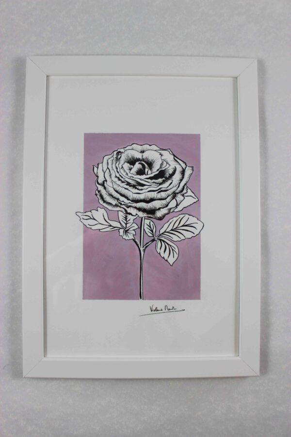 Illustration botanique - rose sur fond lilas encadrée - Violaine Martin Créations - Création textile - tissage jacquards, unis et velours - Hauts-de-France