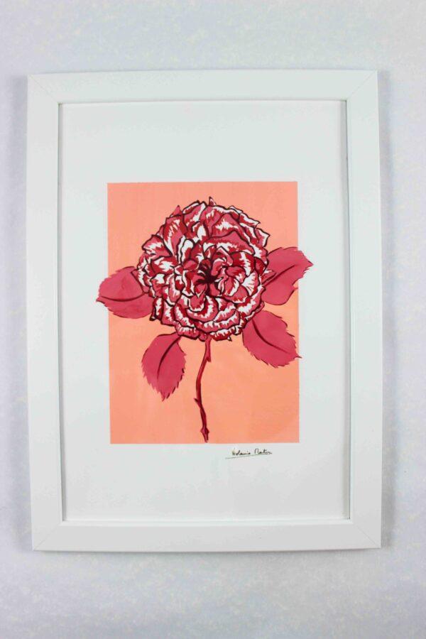 Gouaché botanique - rose sur fond pêche encadrée - Violaine Martin Créations - Création textile - tissage jacquards, unis et velours - Hauts-de-France