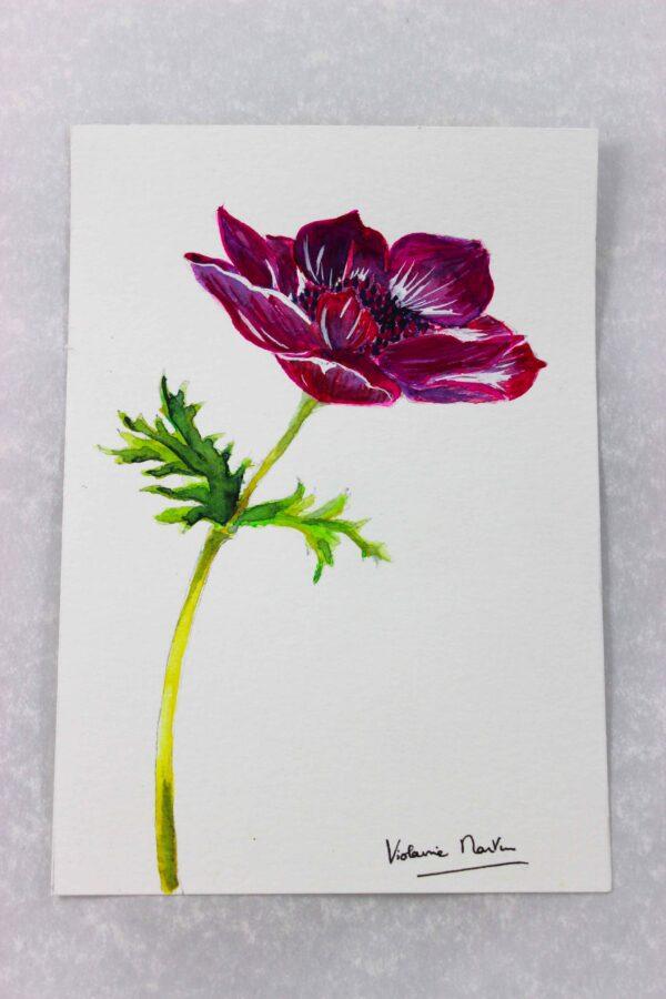 Aquarelle botanique - anémone carmin - Violaine Martin Créations - Création textile - tissage jacquards, unis et velours - Hauts-de-France