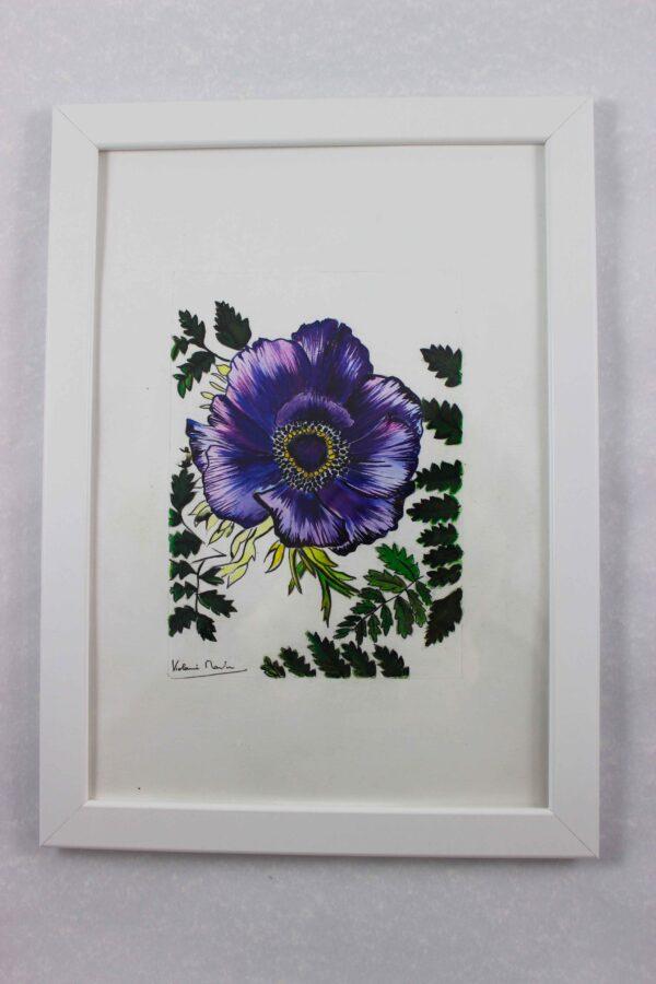 Aquarelle botanique - anémone violette encadrée - Violaine Martin Créations - Design textile - tissage jacquards, unis et velours - aquarelles botaniques - Hauts-de-France