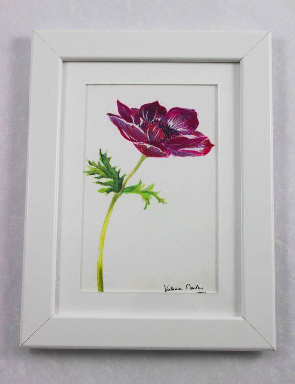 Aquarelle botanique - petite anémone carmin encadrée - Violaine Martin Créations - Création textile - tissage jacquards, unis et velours - Hauts-de-France